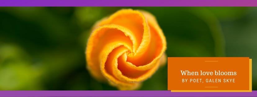 When love blooms - by Galen Skye